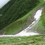 Bhojpatra forest and a Glacier in valley of Flowers