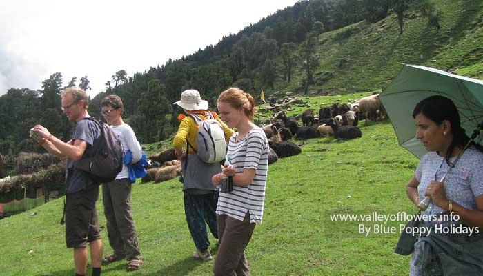 Group members at a Bugyal (Alpine meadows) on Chopta to Tungnath trek.