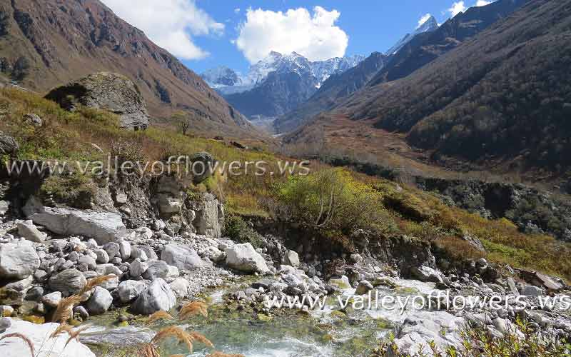 Valley of Flowers after floods - Shallow stream, No damage to the flowering area is seen