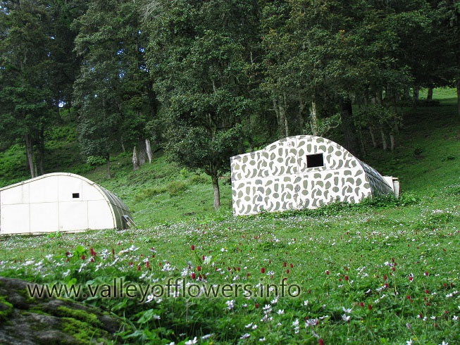Army Iglu huts near Auli, You can see Anemone flowers also