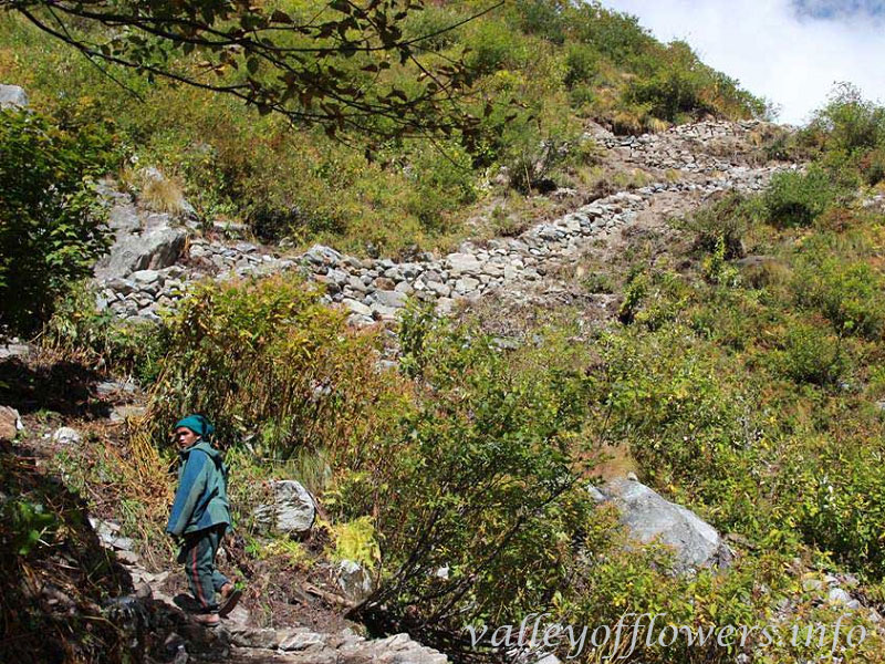A local going to Valley of Flowers using the new trek