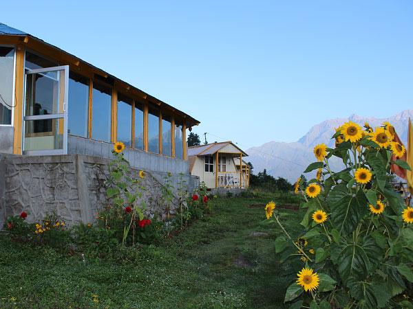 Auli-huts